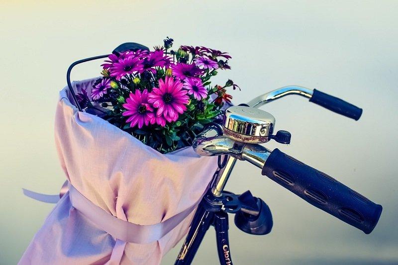 Kwiaty w koszyku rowerowym