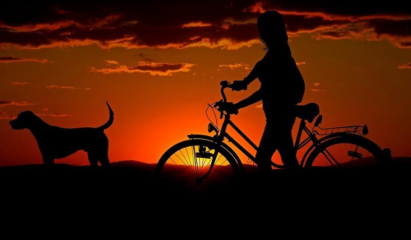 Podróżowanie z rowerem Unibike