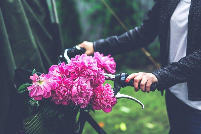 Rower z koszykiem i kwiatami
